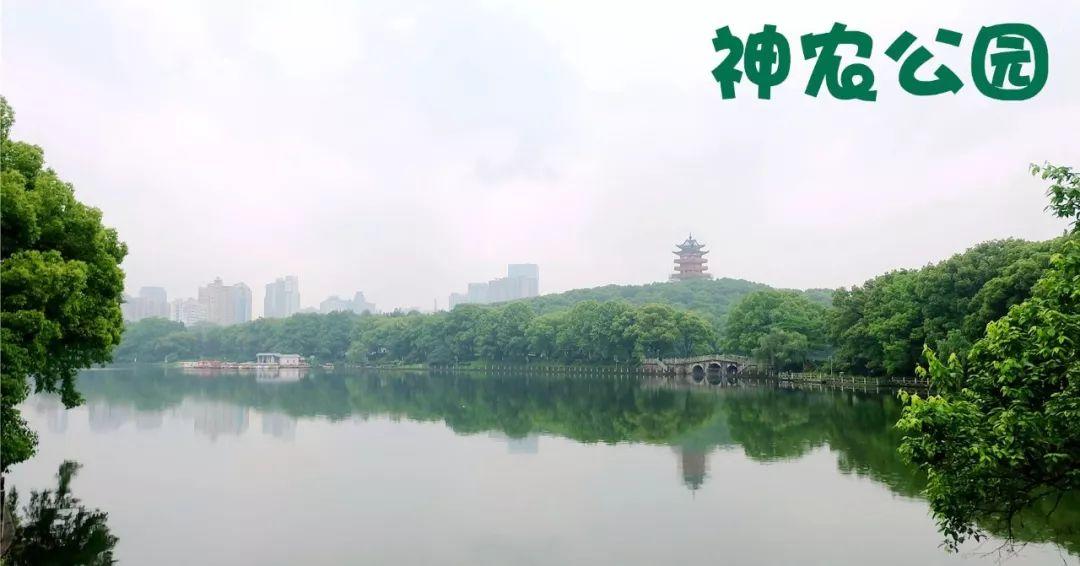 """株洲两人入选4月""""湖南好人榜""""【要闻速览】"""