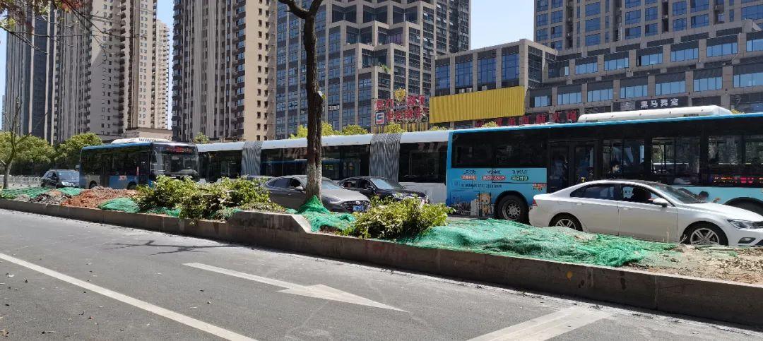 【重要】3月30日起智轨试运营,20条公交线路、站点有调整!