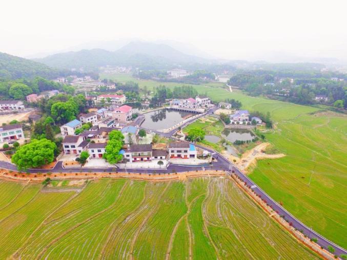 长沙望城这个村,走出了七名烈士......